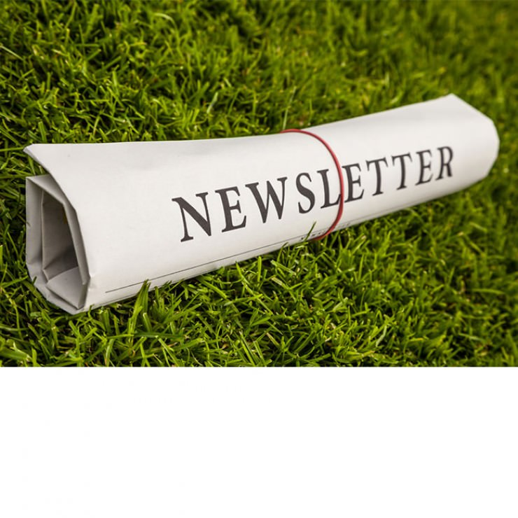 newsletters-and-videos.jpg